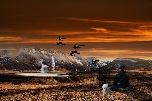 Landscape, Little Boy, Sit, Bird Cage, Birds