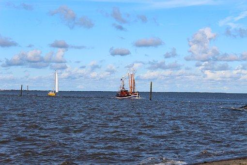 Shrimp, Cutter, North Sea, Port, Fishing Vessel