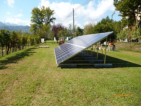 The Plant To The Ground, Pv, Energy Saving, Energi
