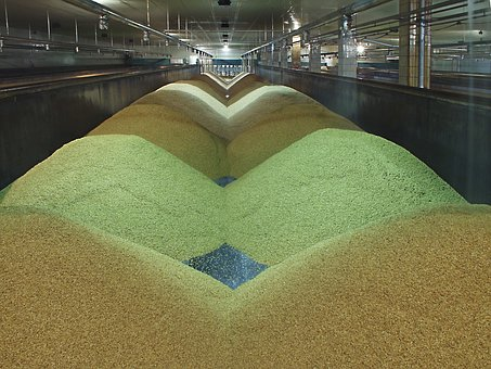 The Malting Process, Preparation, Raw Materials