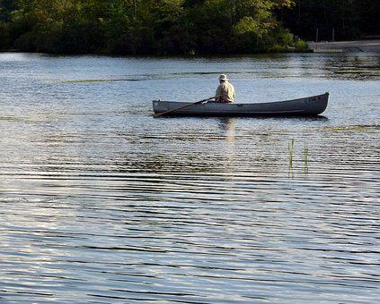 Boat, Rowing, Rowboat, Fishing, Row, Lake, Fisherman