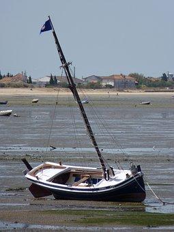 Fischer, Boot, Ebb, Fishing Boat, Fish, Small Boat