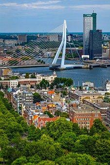 City, Cityscape, Aerial View, Bridge, Building, Tower