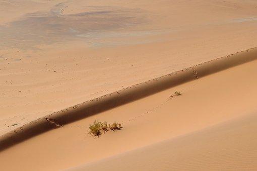 Sand, Dune, Background, Screen, Desert, Traces, Not