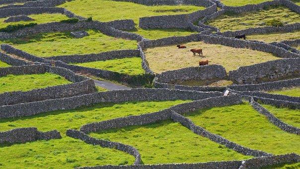 Ireland, Stone Wall, Green, Inisheer