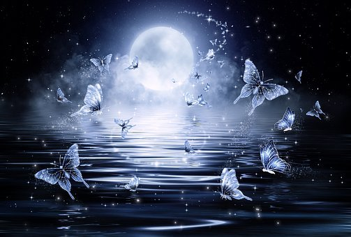 Butterfly, Stars, Night, Fantasy, Fairy Tale, Sea