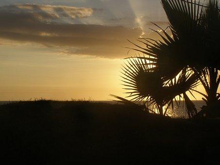 Silhouette, Sun, Summer, Sunset, Sky, Clouds, Person