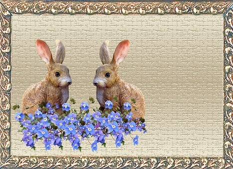 Greeting Card, Rabbits, Blue Flowers
