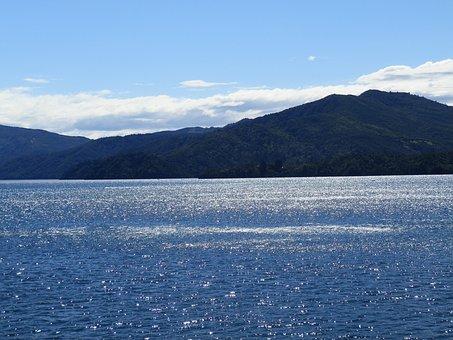 New Zealand, Ocean, Water, Holiday