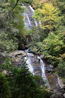 Anna Ruby Falls, Creek, Helen, Georgia, Forest