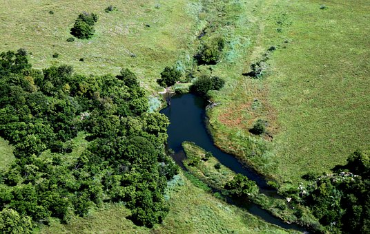Aerial Shot, Green, Grass, Water, Dam, Thick Bush