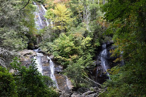 Anna Ruby Falls, Creek, Helen, Georgia, Forest