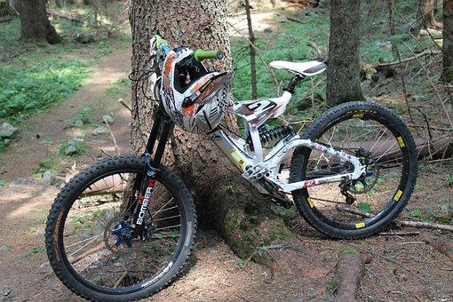 Wheel, Mountain, Helmet, Forest, Mountain Bike