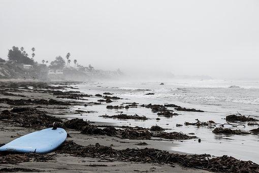 Usa, Beach, Surfboard, Wakeboard, Surf, Alone