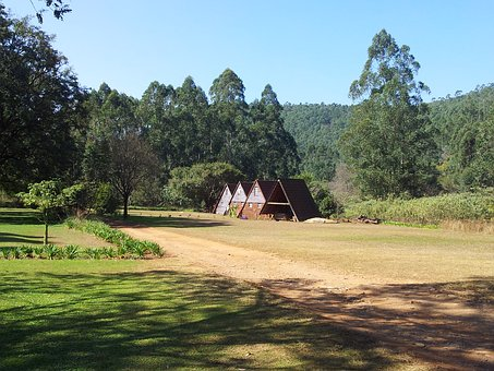 Cottages, Forest, Tourism, Refuge, Beauty, Hut, Cabin
