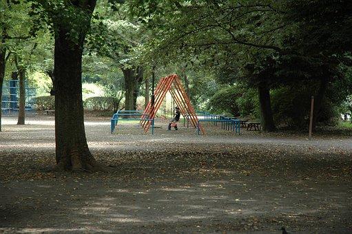 Park, Summer, Japan, Green, Endless Summer, Big Tree