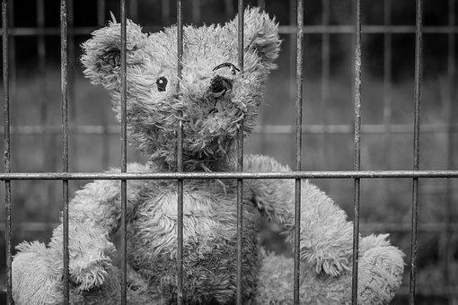 Teddy, Bear, Lost, Childhood, Lonely, Loneliness