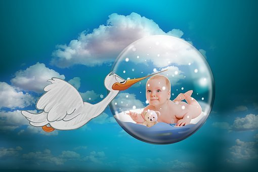 Baby, Stork, Rattle Stork, Fertility, Storks, Children