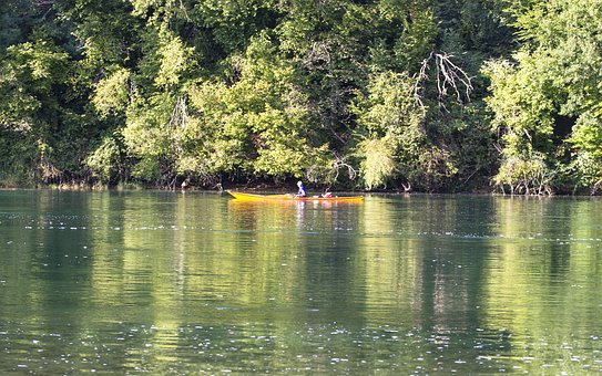 Rhine, Boot, Canoeing, Water, River, Bank, Nature