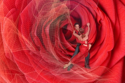 Dance, Passion, Pair, Rose, Red, Love, Live, Joy, View