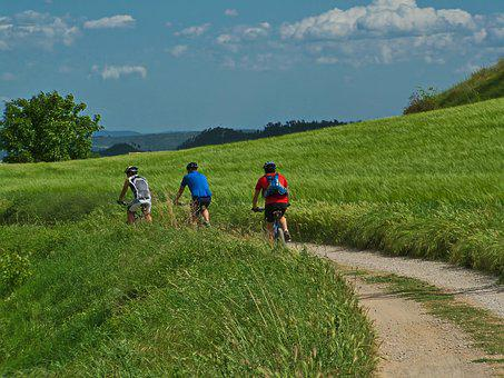 Bicycle, Man, Way, Sport, Bike, Cycle, Active, Biking
