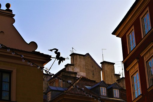 Roof, Dragon, Over The Rooftops, Warsaw, Poland