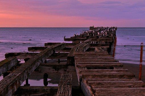 Punta Arenas, Spring, Sea, Sky, Chile, Costa