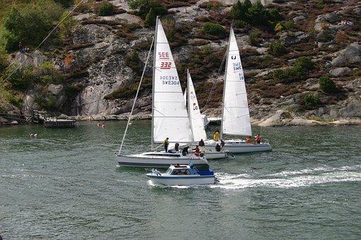 Sailboat, Sea, Boat, Sailing Race, Summer, Sailing