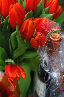 Red Tulips, Meeting, Party, Gift