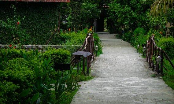 Hotel, Resort, Nature, Vacation, Summer, Holiday, Water