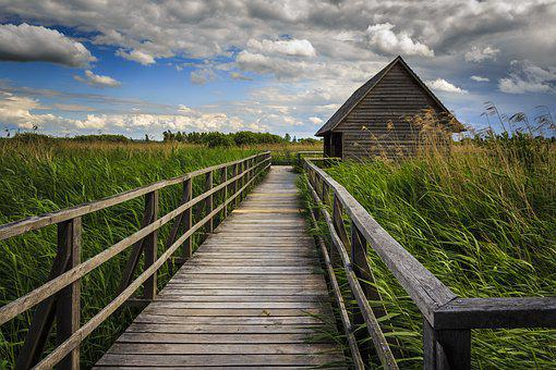 Bad Buchau, Spring Lake, Wooden Bridge, Moorland