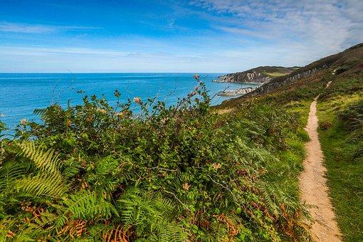Coast, Walkway, Ocean, England