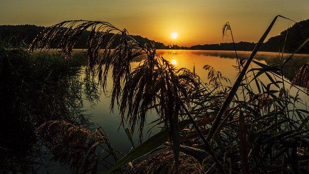 Sunrise, Grass, Destination Finger Lake, Sun, Landscape