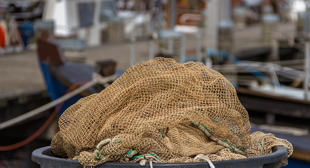 Fishing Net, Old Network, Catch, Old, Seaweed, Beach