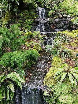 Waterfall, Spring, Water, Ferns, Nature, Landscape