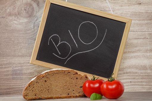 Bio, Bread, Slice Of Bread, Healthy, Eat, Frisch