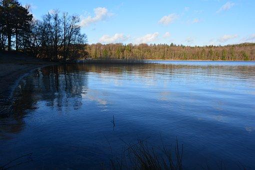 Lake, Water, Natural, Landscape, Denmark, Forest, Trees