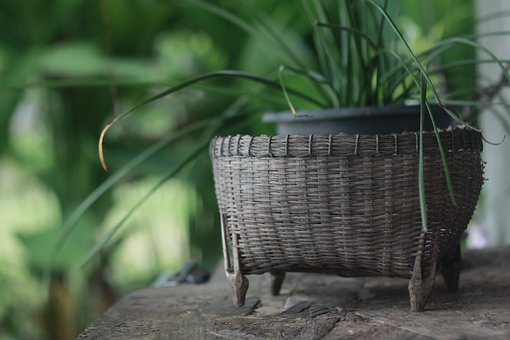Basket Weave, Nature, Countryside, Culture, Lifestyle