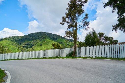 Road, Fence, Go, The Return, Home, Village, Rural