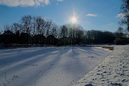 Winter, Snow, View, Lake, Tree, Landscape, Nature