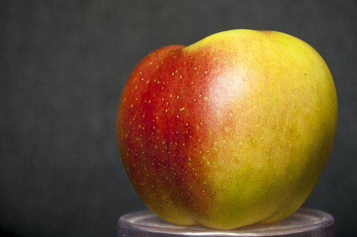 Apple, Delicious, Food, Fruit, Sweet, Organic, Natural