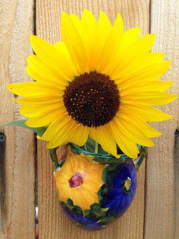 Sunflower, Flower, Summer, Bright, Spring, Blooming
