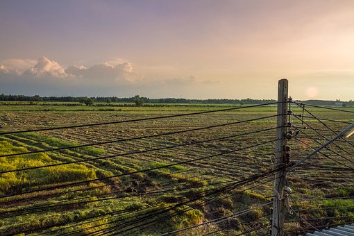 Thailand, Fields, Farm, Agriculture, Asia, Rice, Nature