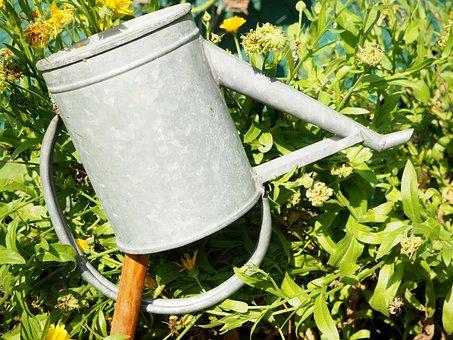 Watering Can, Garden, Marigold, Flowers, Pot, Gardening