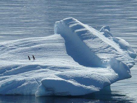 Iceberg, Ice Floe, Antarctica, South Pole, North Pole