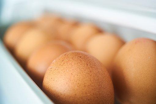 Egg, Chicken, Closet, Ovarian, Refrigerator, Spawn