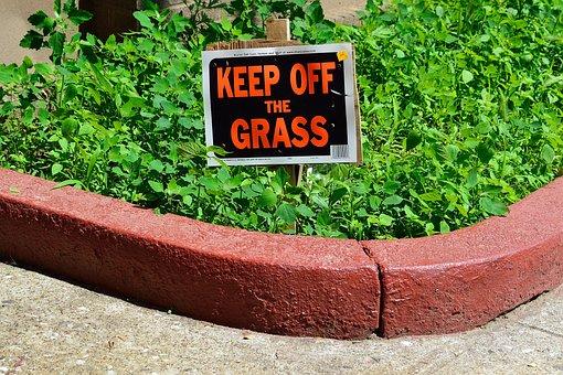 Keep Off Grass Sign, Sign, Lawn, Brick, Grass, House