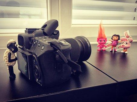 Coman Of, Dora, Game, Puppies, Camera, Photo Studio