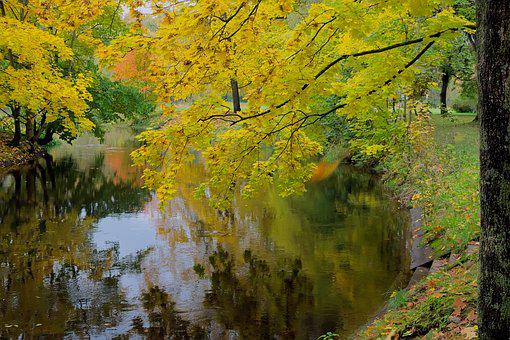 Landscape, Poland, Nature, Autumn, Water, River