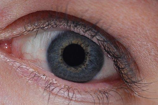 Eye, Close Up, Grey Blue, Sense, Woman